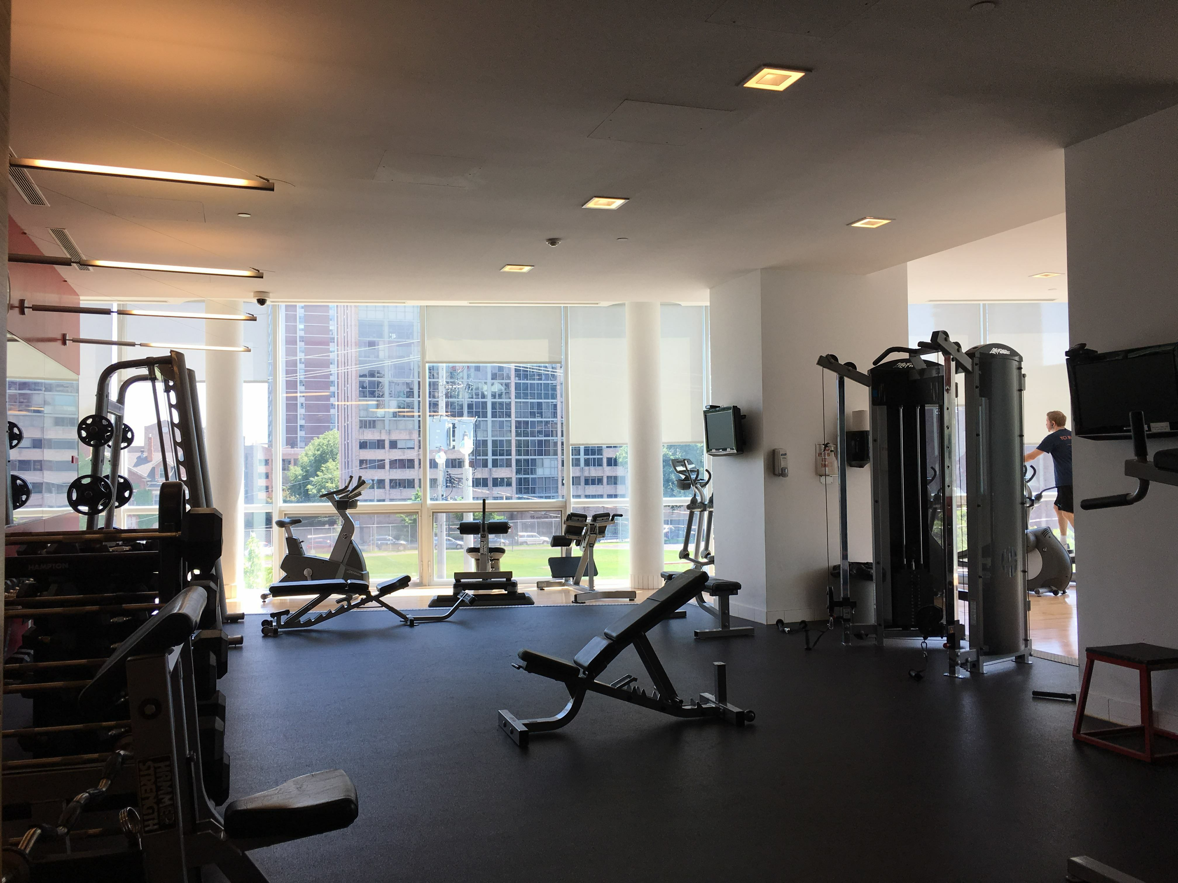 Summer Sublet downtown Toronto - FEMALES